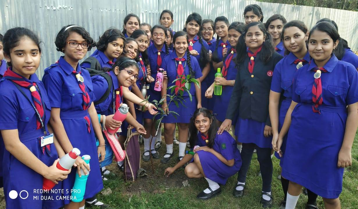 Cubs and Bulbul Enrollment 2019-20 & Scouts and Guide Enrollment 2019-20